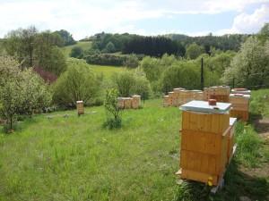 Naše úly